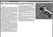 Advertiser News - Year of the Dog