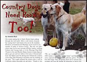 Sussex County Publication Story